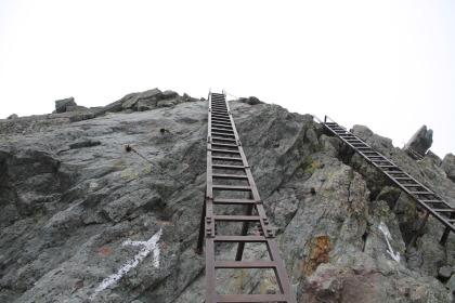 方舟树屋平台两层梯子